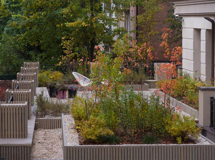 Сад на крыше в центре Москвы фото [13]