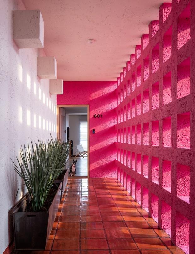 Квартира в высотке с розовым коридором в Мехико (фото 0)