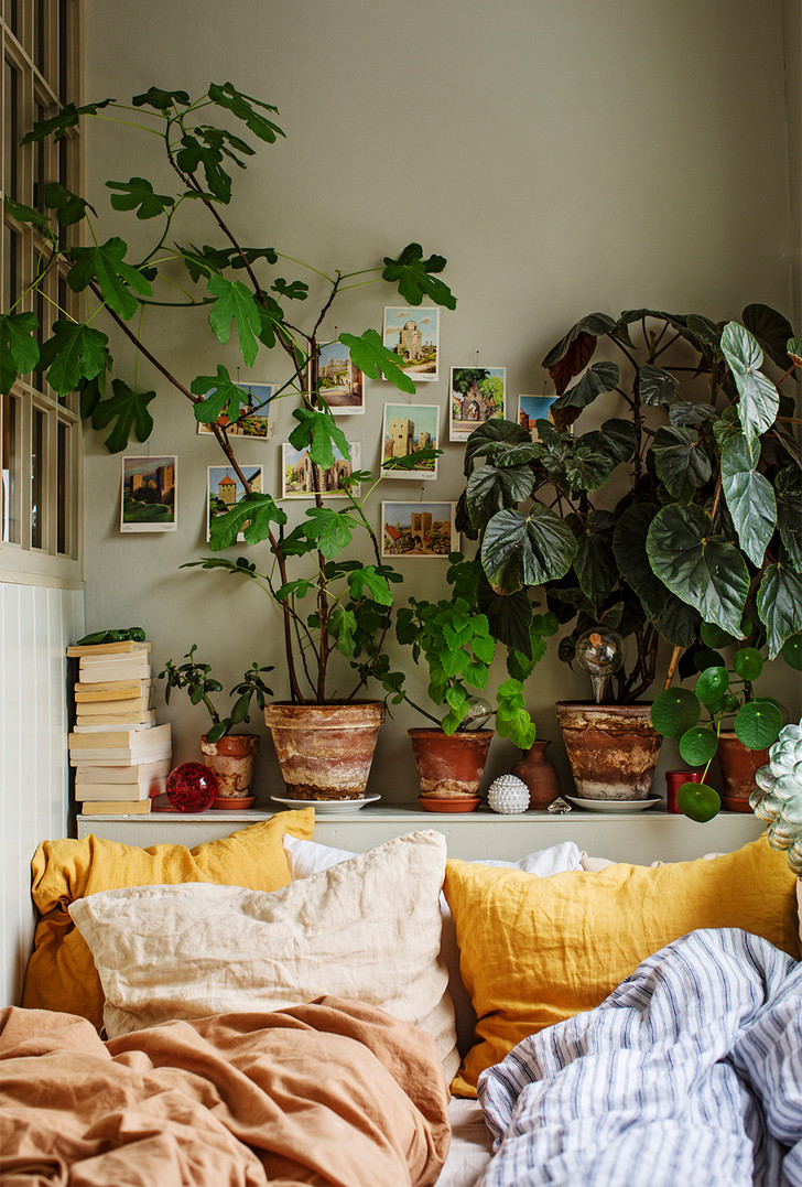 Простые способы обновить дом летом (фото 4)