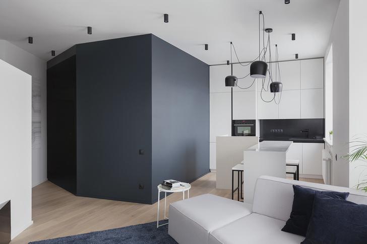 Квартира 72  м²: проект бюро Shkaf Architects (фото 0)