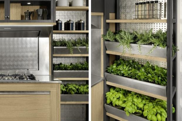 Сад на кухне: как вырастить салатные травы красиво (фото 4)