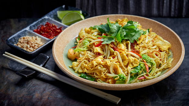 Лапша удон - рецепты приготовления в домашних условиях и блюда с овощами, курицей и соусом терияки