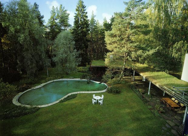 Модные сады в стиле mid-century modern (фото 6)