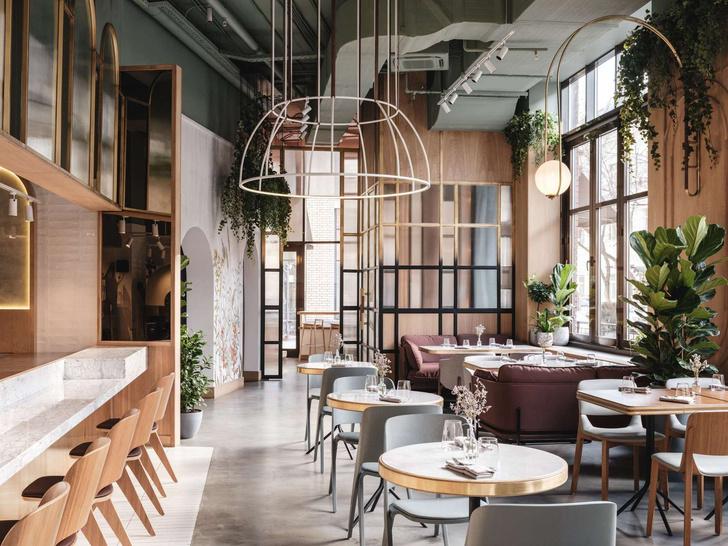 Ресторан The Y на Малой Пироговской (фото 0)