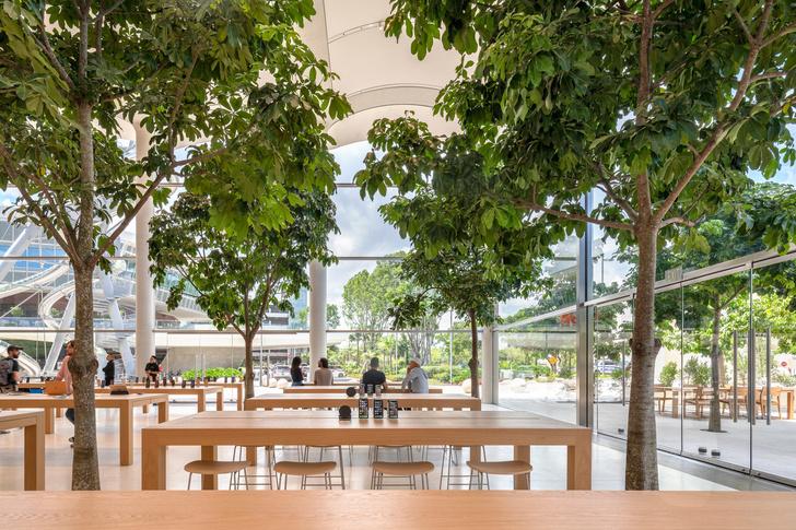 Новый бутик Apple в Майами по проекту Foster+Partners (фото 3)
