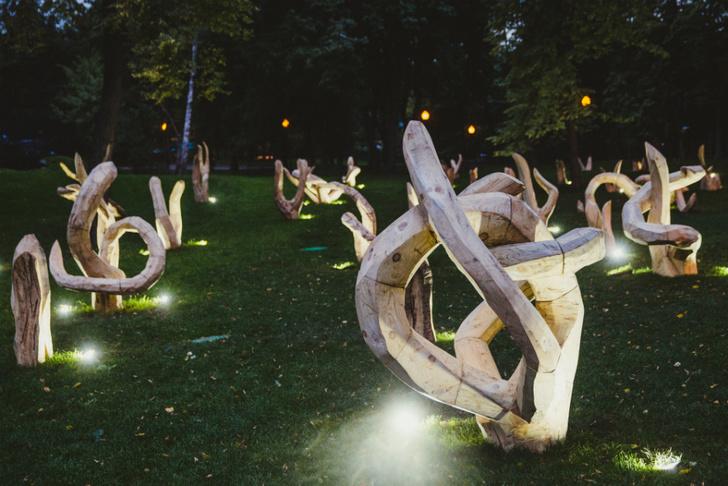 Стал известен победитель гранта Glenmorangie Signet Land Art фото [3]
