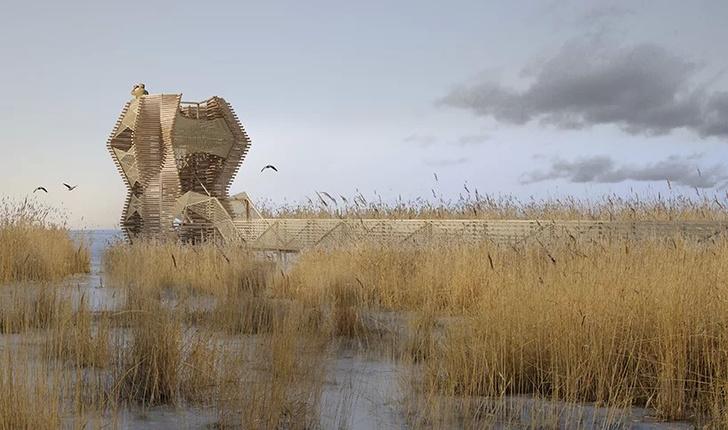 Наблюдательная вышка для орнитологов от студии Bilska de Beaupuy (фото 0)