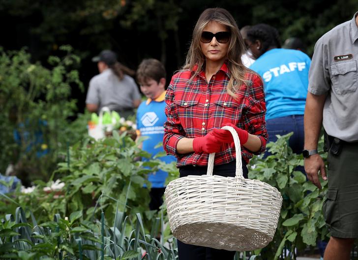 Мелания Трамп разбила огород на территории Белого дома фото [3]