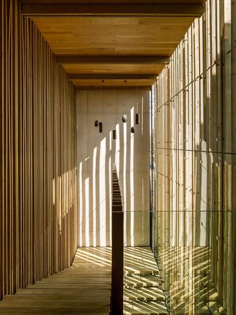 Дерево и стекло: современный ресторан в Мехико (фото 3)
