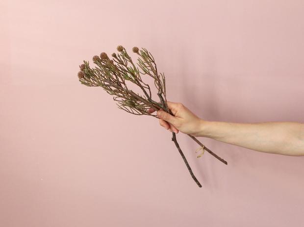 Мастер-класс: осенний букет из диких цветов (фото 31)