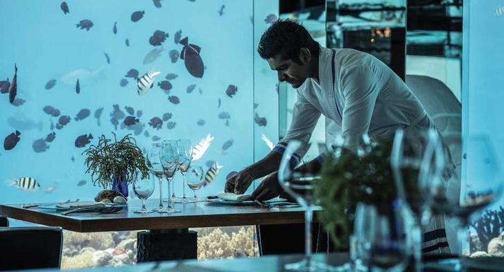 Полное погружение: топ-10 лучших подводных ресторанов (фото 2)