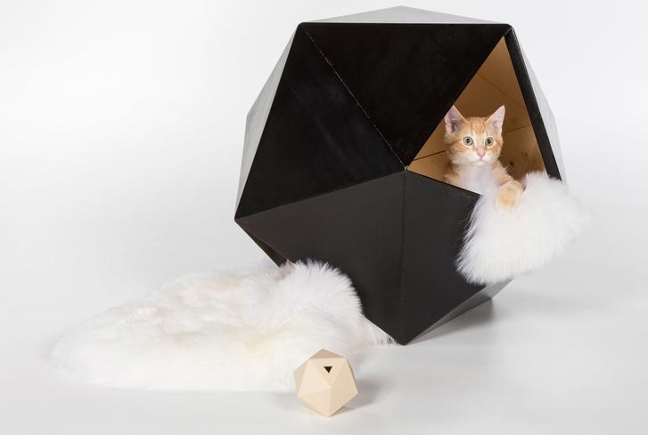 Топ-30: дизайнерские предметы для животных (фото 1)