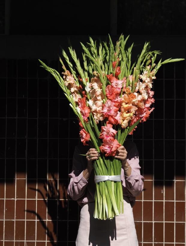Как гладиолусы стали модными цветами и как правильно за ними ухаживать? (фото 1)
