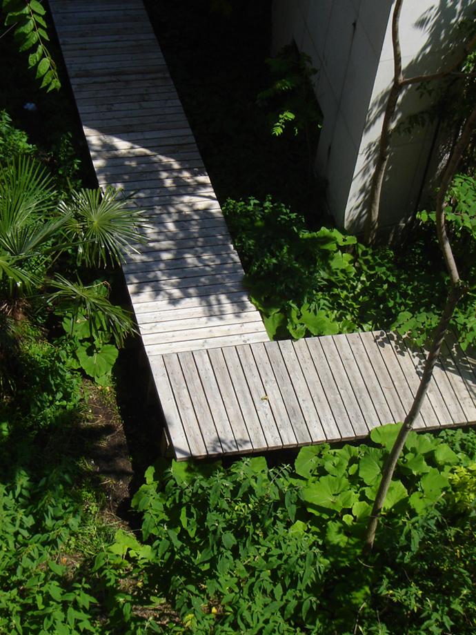 Садовые дорожки: практичные советы | галерея [3] фото [3]