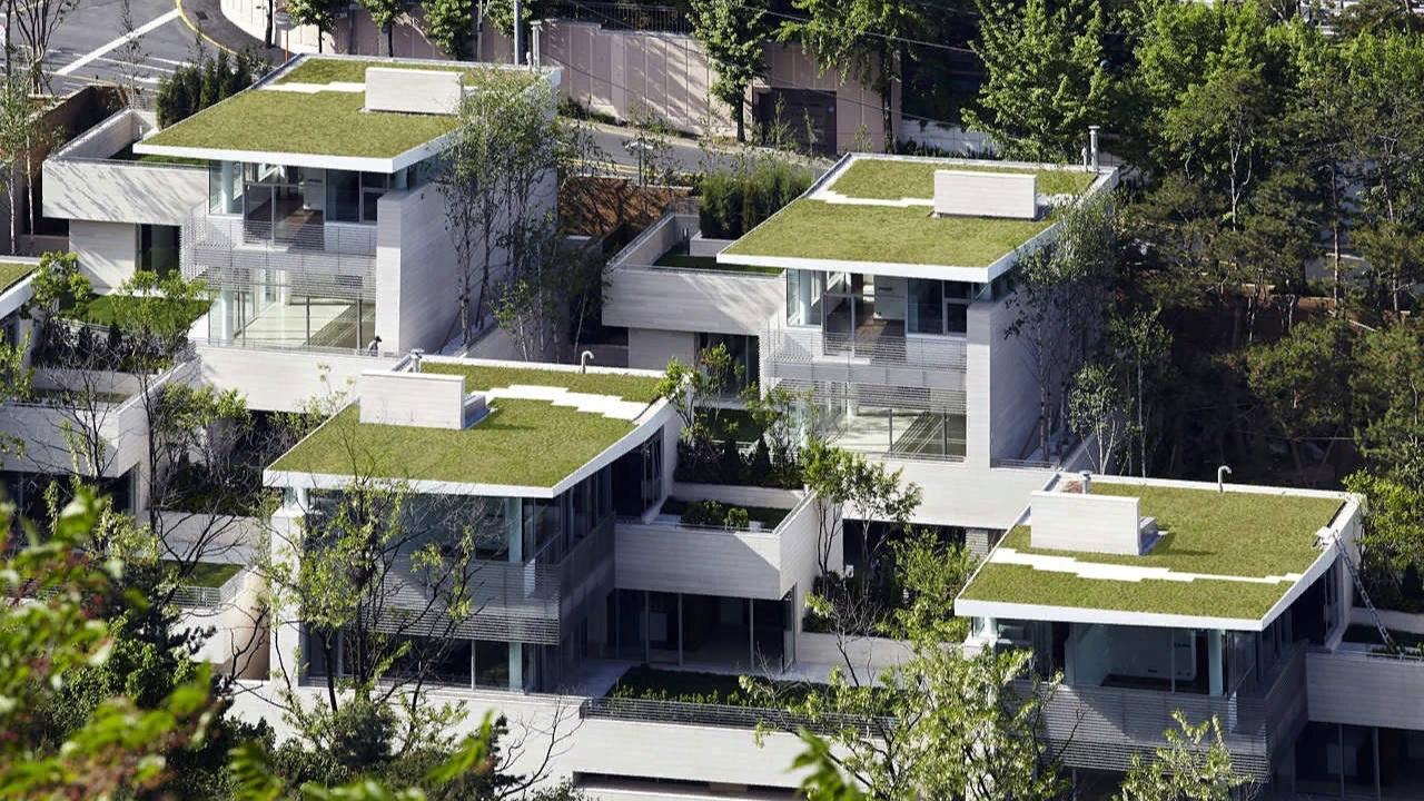 Пятый фасад: зеленые крыши (галерея 33, фото 1)