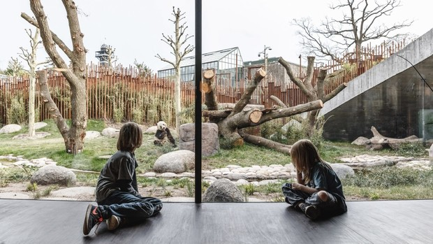 В зоопарке Копенгагена построили дом для панд (фото 13)