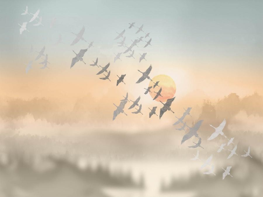 Небесная канцелярия: обои с рисунком неба (галерея 1, фото 4)