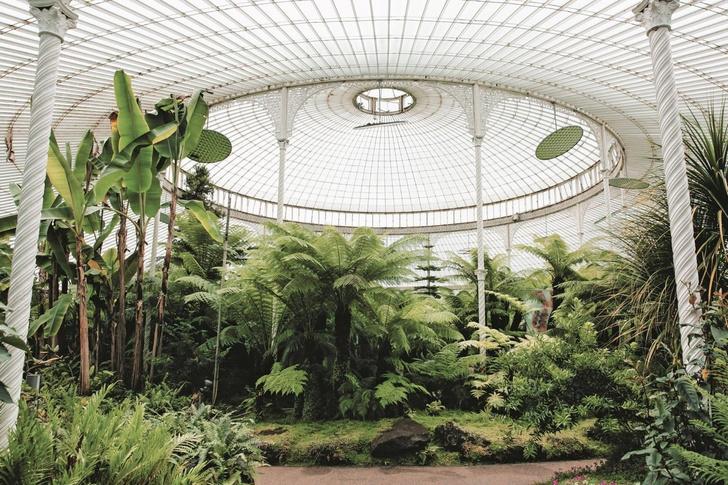Самые необычные оранжереи мира (фото 62)