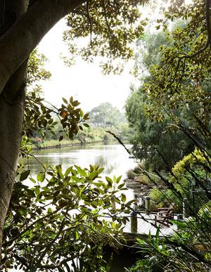 Эклектичный сад на берегу реки в Австралии (фото 11.1)