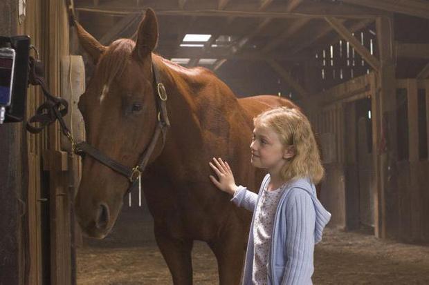 Самые трогательные фильмы о животных (фото 13)