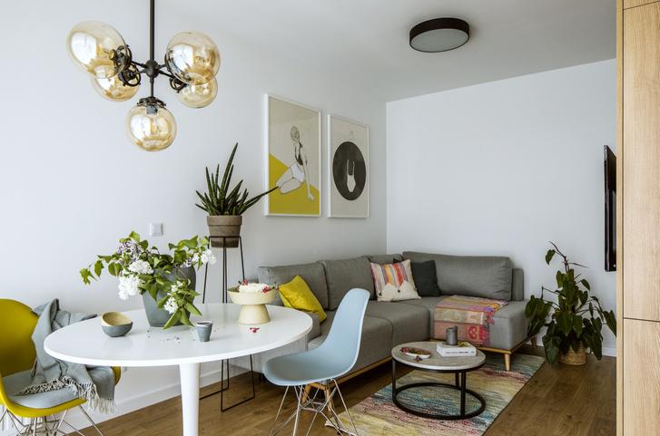 Маленькая квартира 36 м²для сдачи в аренду в Польше (фото 2)
