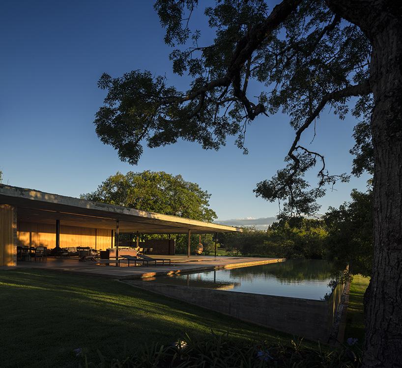 Пятый фасад: зеленые крыши (галерея 3, фото 5)