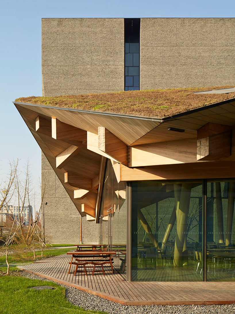 Пятый фасад: зеленые крыши (галерея 27, фото 2)