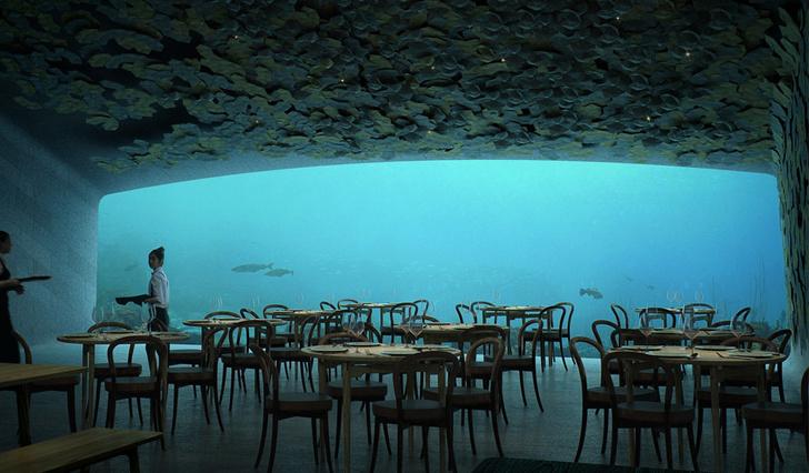 Подводный ресторан в Норвегии фото [3]