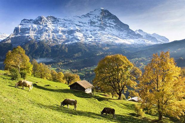 Швейцария 1