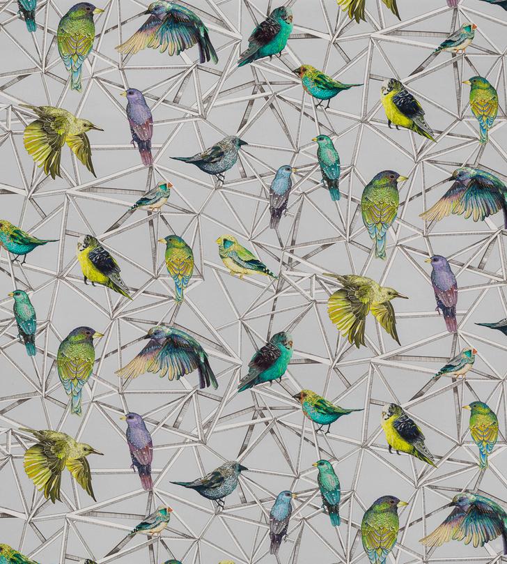 Это что за птица? Обои и предметы декора, которые окрыляют фото [21]