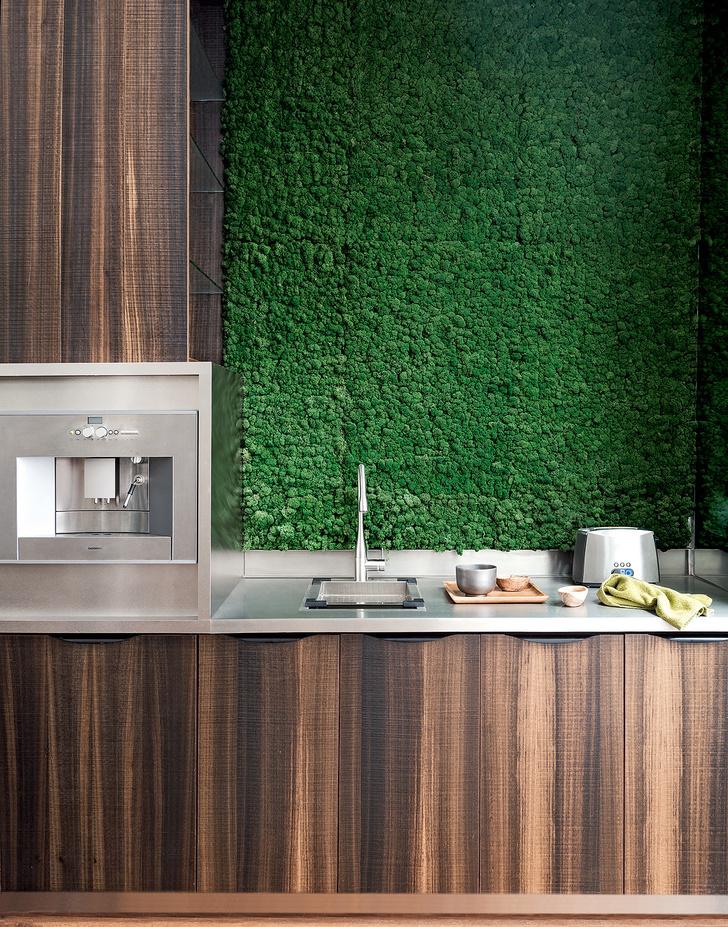 Практика: зеленые стены (фото 11)