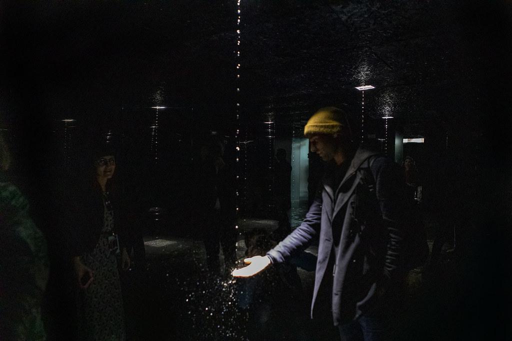 Форма воды: иммерсивный объект AQUA. Leonardo's Vision (галерея 5, фото 5)