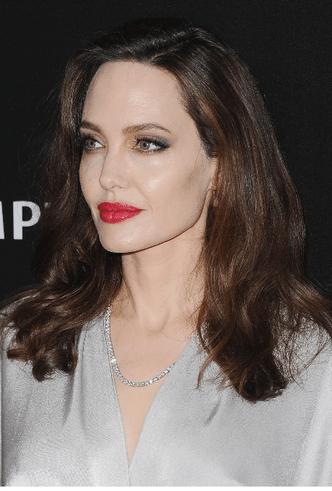 Дива дивная: Анджелина Джоли затмила всех на церемонии Hollywood Film Awards фото [5]