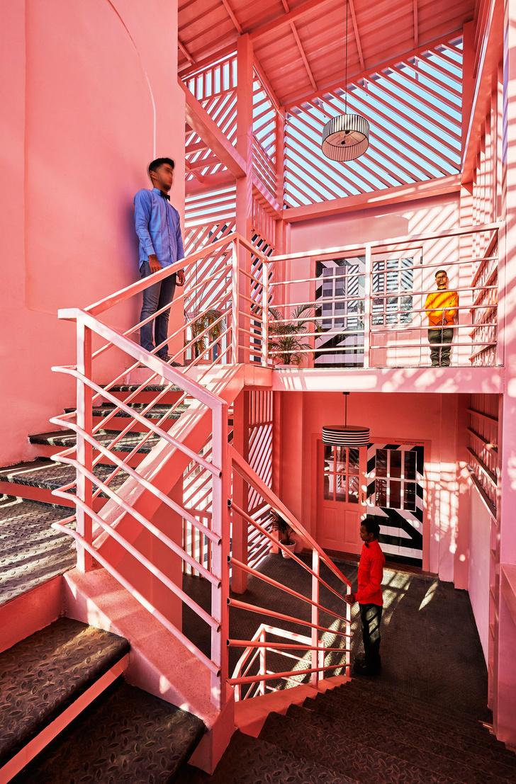 The Pink Zebra: ресторан в эстетике Уэса Андерсона (фото 4)