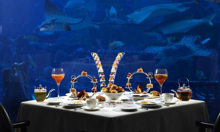 Полное погружение: топ-10 лучших подводных ресторанов (фото 23)