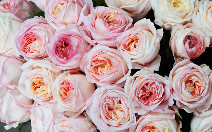 Модный букет: советы флориста 2