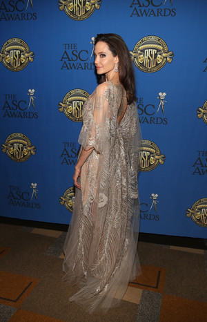 Как принцесса: Анджелина Джоли затмила всех на ACS Awards (фото 4)