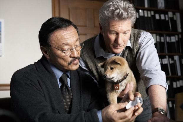 Самые трогательные фильмы о животных (фото 5)