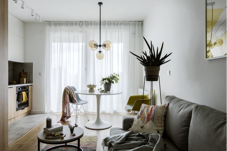 Маленькая квартира 36 м²для сдачи в аренду в Польше (фото 0)