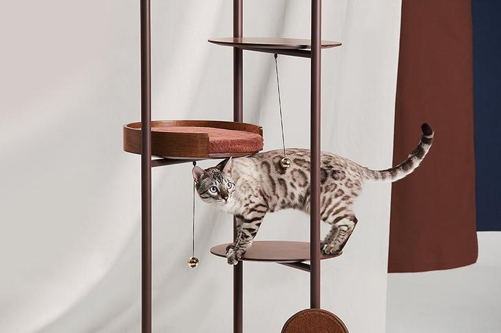 Топ-25: дизайнерские предметы для животных (фото 0)
