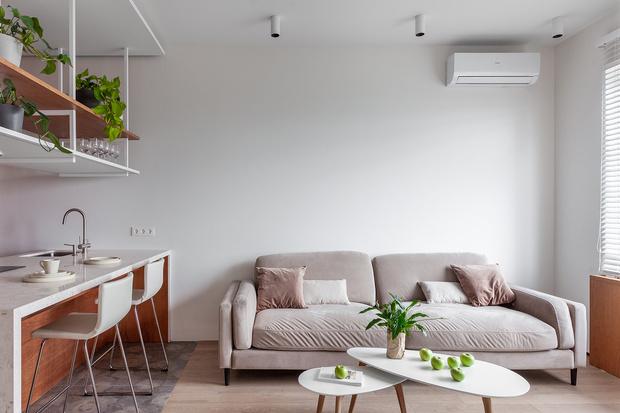 Квартира 44 м² для успешного бизнесмена от студии MAST (фото 0)