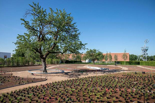 Сад Пита Удольфа на кампусе Vitra (фото 3)