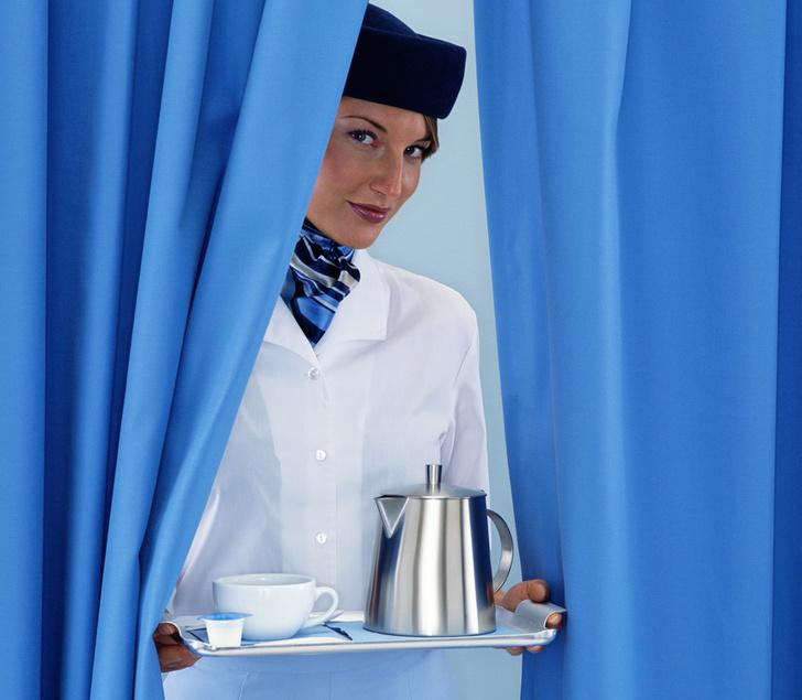 Вкус на высоте: меню авиакомпаний фото [1]