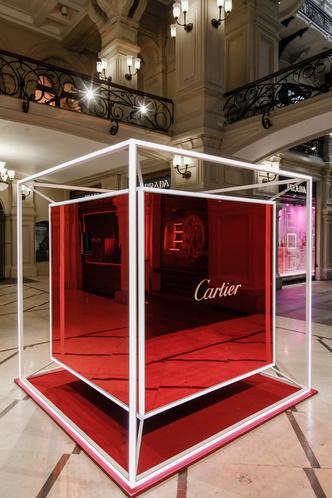 Must see: выставка Cartier в ГУМе (фото 5.2)