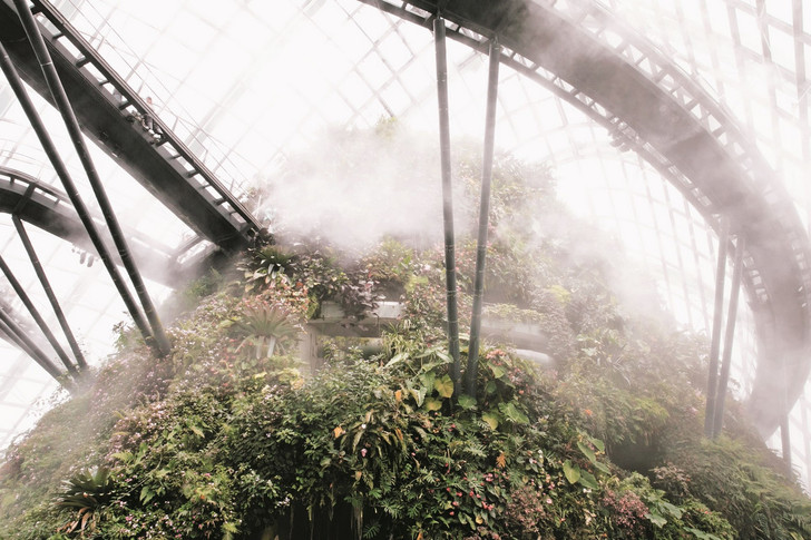 Самые необычные оранжереи мира (фото 56)