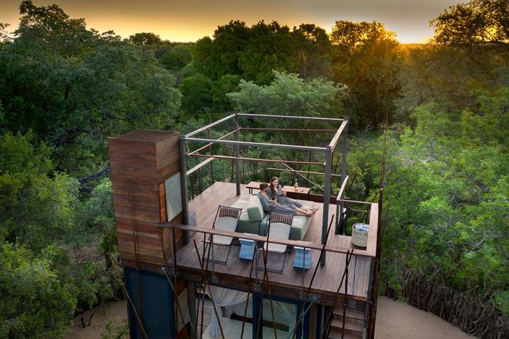 Отель на дереве (фото 0)