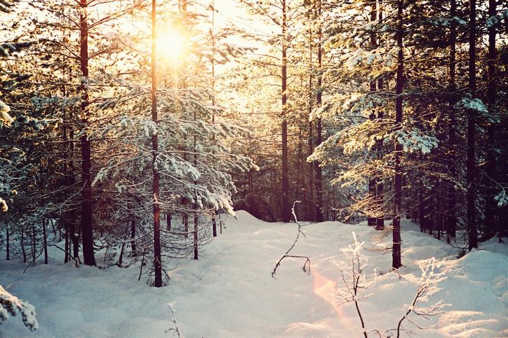 ELLE Inspiration: зима