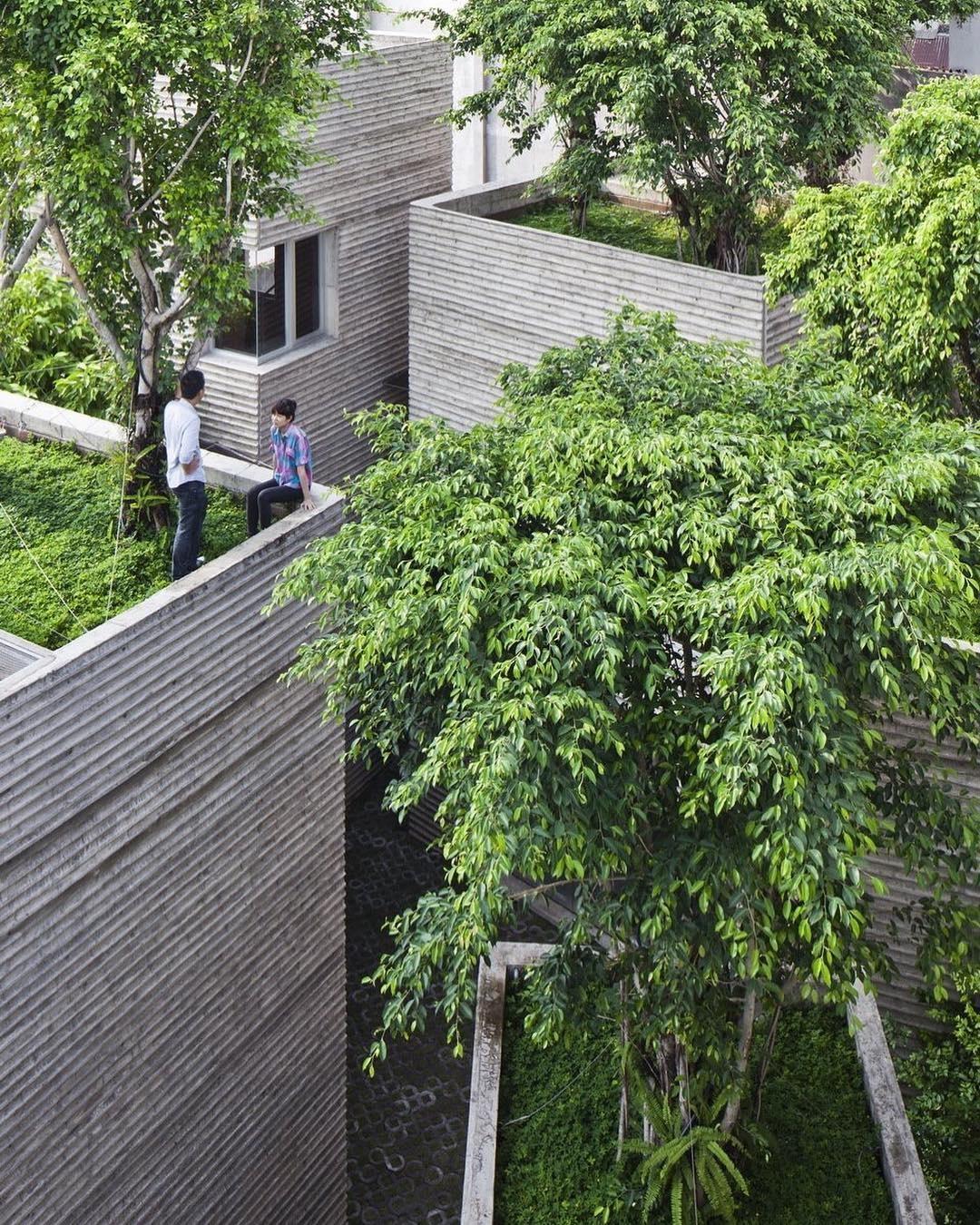 Пятый фасад: зеленые крыши (галерея 33, фото 0)
