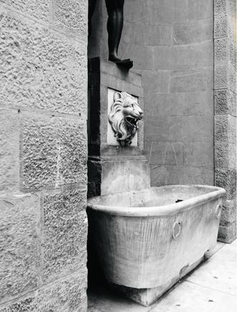 Томас Физант: Античная классика (фото 7)