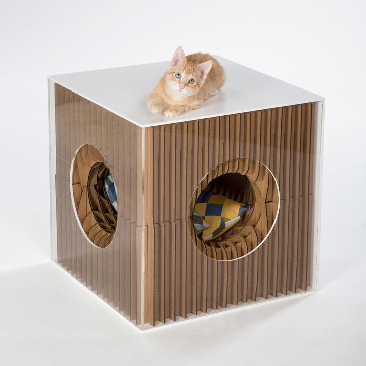 Топ-30: дизайнерские предметы для животных (фото 4)